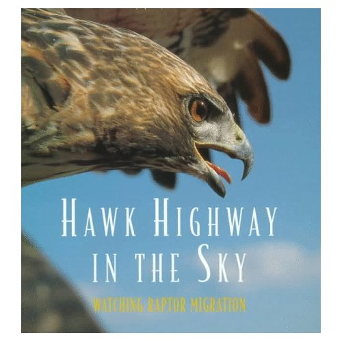 Hawk Highway in the Sky: Watching Raptor Migration