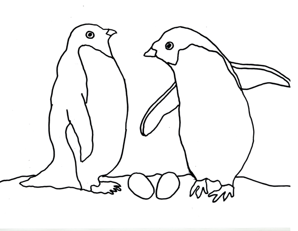 google images coloring pages penguin - photo#15