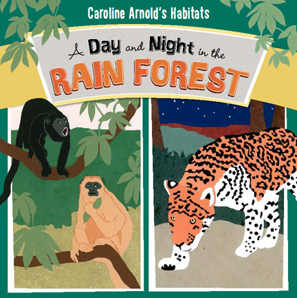 A Day and Night in the Rain Forest cover