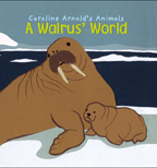 A Walrus' World cover